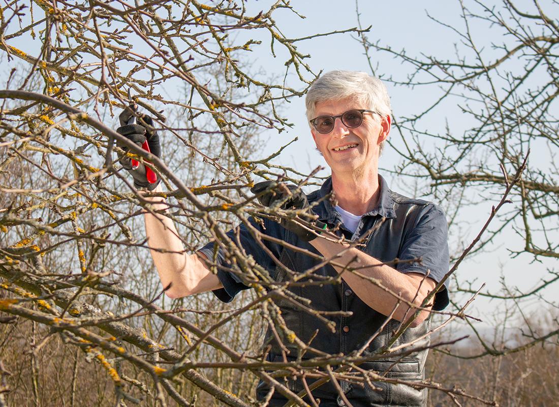 Landtagskandidat Reiner Friedsam pflegt Obstbäume zur Unterstützung der Artenvielfalt